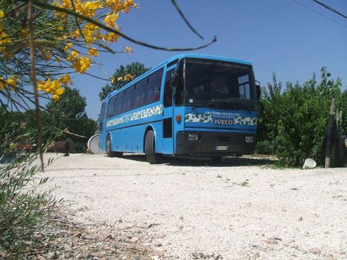 foto-bus-002