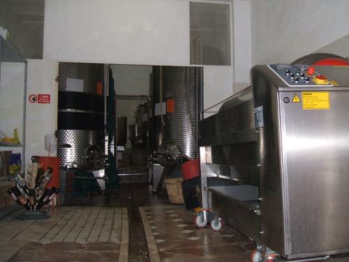 vini-romagnoli-074